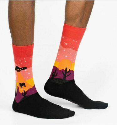 Area 51 Socks