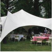 20' x 20' Eureka Capri Party Canopy Tent