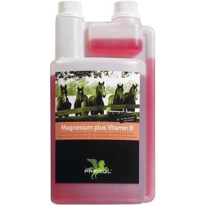 Parisol Magnesium plus Vitamin B