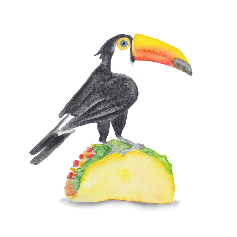 Bird Lover Watercolor Painting, Watercolor Toucan, Watercolor Bird Decor, Jungle Bird, Watercolor Taco, Nature Decor, Tropical Bird