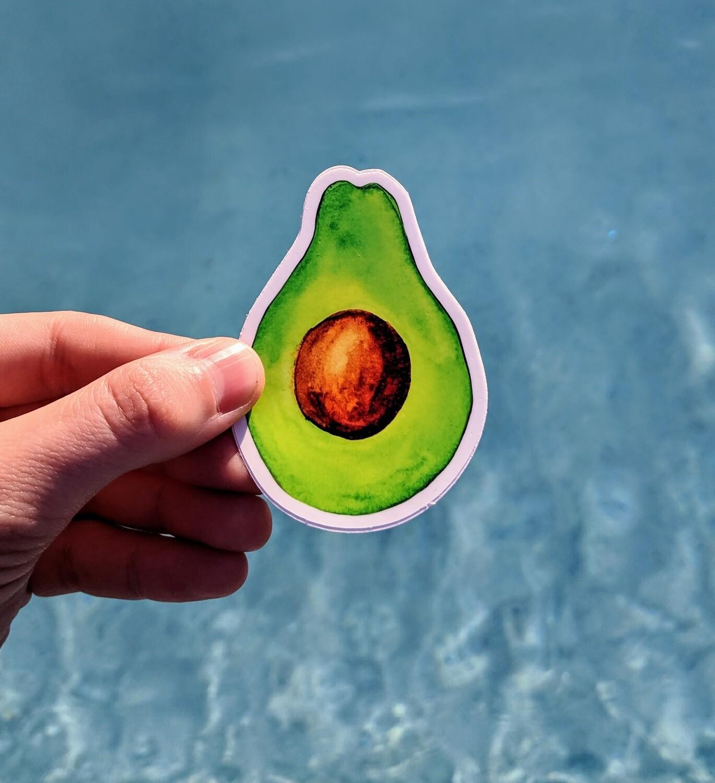 Watercolor Avocado- Durable Vinyl Sticker - Watercolor Illustration