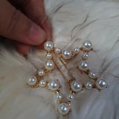 Hair Clip: Star