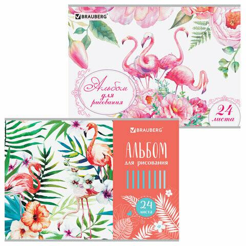 """Альбом для рисования 24 л BRAUBERG """"Фламинго"""" скоба 105059"""
