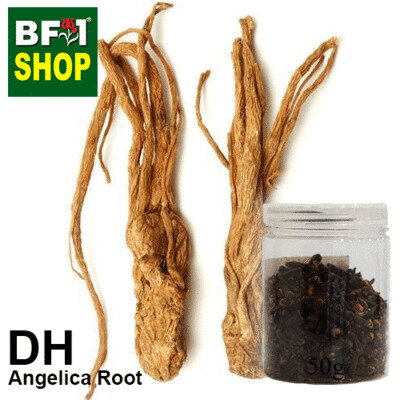 Dry Herbal - Angelica Root- 50g