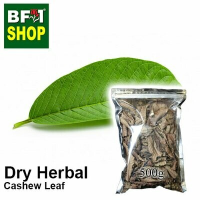 Dry Herbal - Cashew Leaf ( Anacardium Occidentale ) - 500g