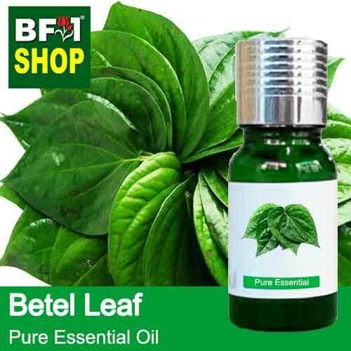Pure Essential Oil (EO) - Betel Leaf ( Daun Sireh ) Essential Oil - 10ml