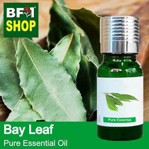 Pure Essential Oil (EO) - Bay Leaf Essential Oil - 10ml