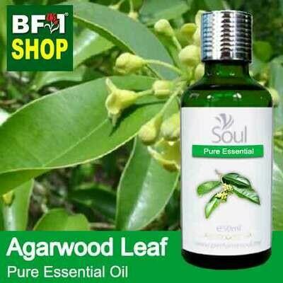 Pure Essential Oil (EO) - Agarwood Leaf Essential Oil - 50ml