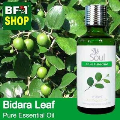 Pure Essential Oil (EO) - Bidara Leaf (Zizyphus Mauritiana ) Essential Oil - 50ml