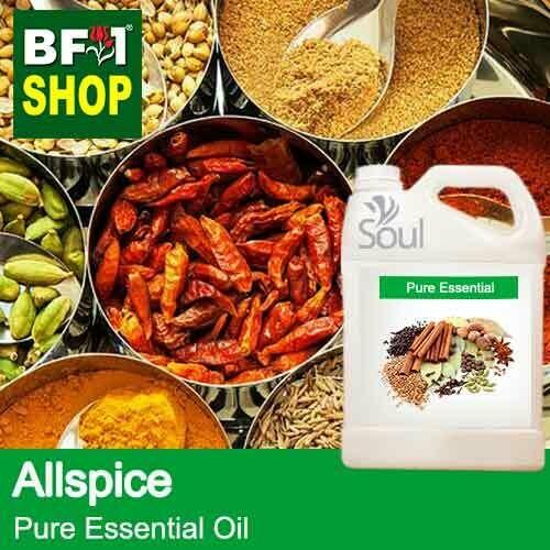Pure Essential Oil (EO) - Allspice Essential Oil - 5L