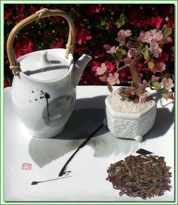 Organic Pu Mai Tan White (China) - 2 oz.