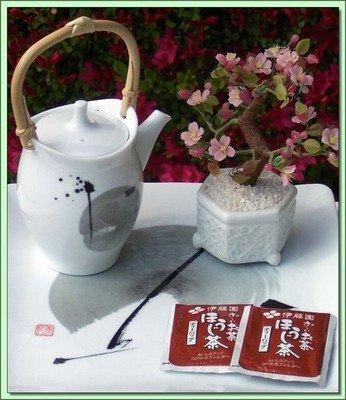 Houjicha (Japan) - 20 Tea bags