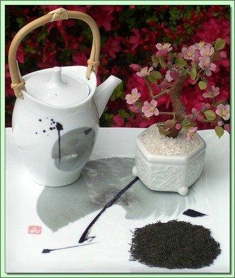 Kokeicha Formed Tea (Japan) - 4 oz.