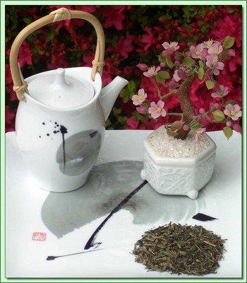 Decaf. Kyushu Sencha (China) - 20 Tea Bags