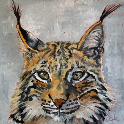 Lynx, oil on canvas, 18x18