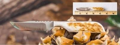 Anza Mini Knife - FE