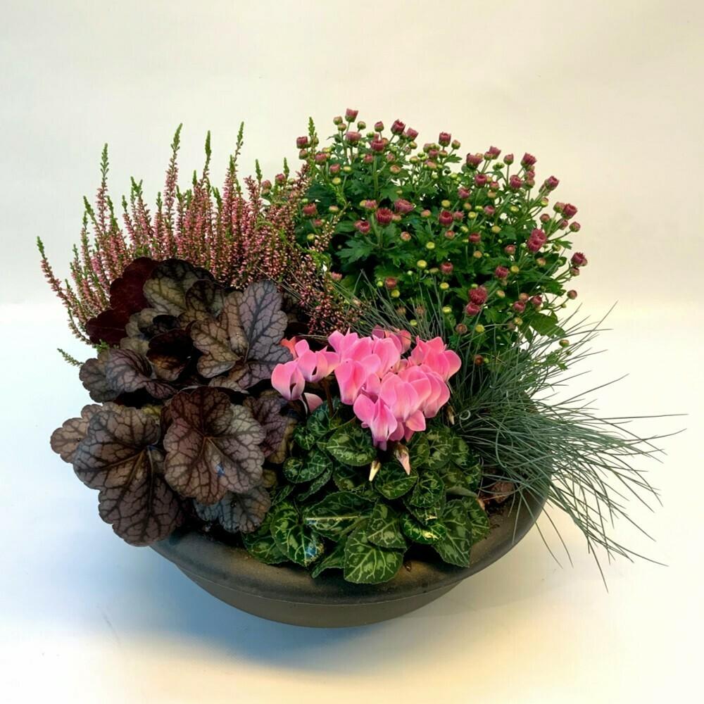Bepflanztes Gefäss Herbst - rot/rosa/grün