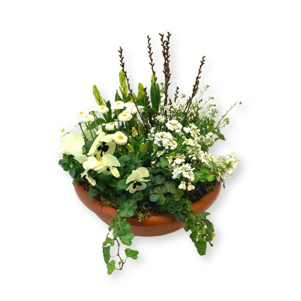 Bepflanztes Gefäss Frühling - blau/weiss