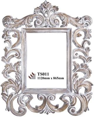 TS011