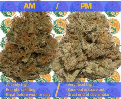 2 1/2 Grams for day & night