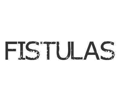 Font License for Fistulas Font