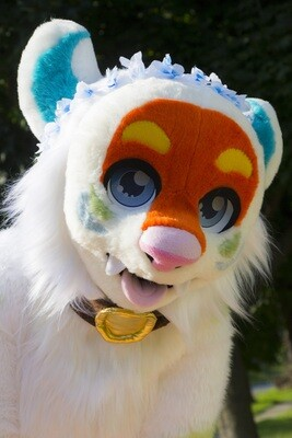 Fursuit Head Mask