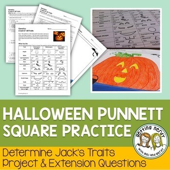 Punnett Squares - Fall Halloween Jack o' All Traits Genetics Activity