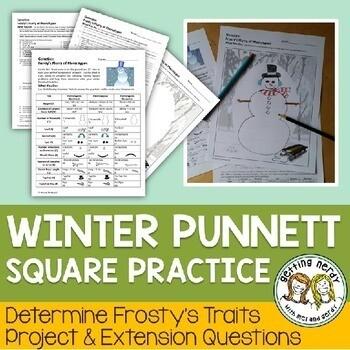 Christmas Science a Winter Genetics Activity - Punnett Square Practice