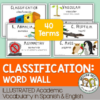 Classification - Word Wall