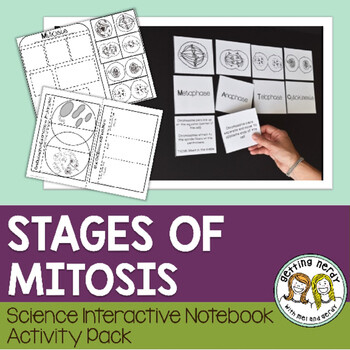 Science Interactive Notebook - Mitosis