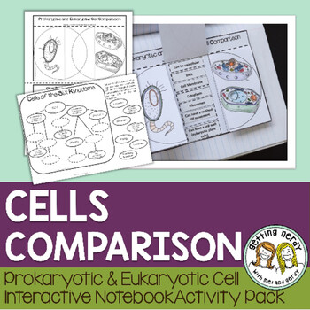 Science Interactive Notebook - Plant Animal and Bacterial Cell Comparison