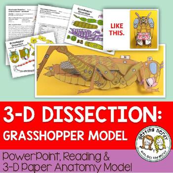Grasshopper Paper Dissection - Scienstructable 3D Dissection Model