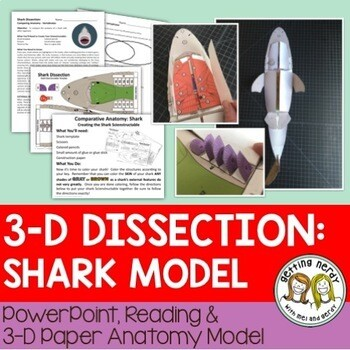 Shark Paper Dissection - Scienstructable 3D Dissection Model