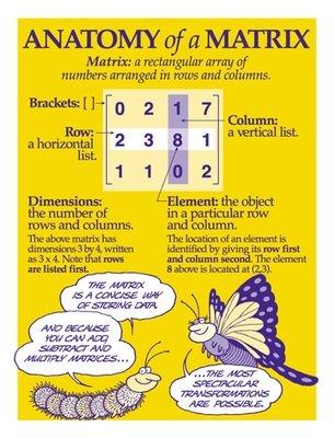 Terms Used in Matrix Algebra