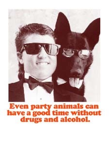 Even party animals..