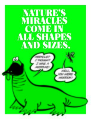 Nature's Miracles Come In All Shapes & Sizes