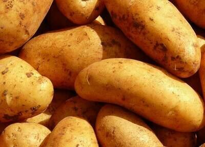 Patates nouvelles Bio - 3kg