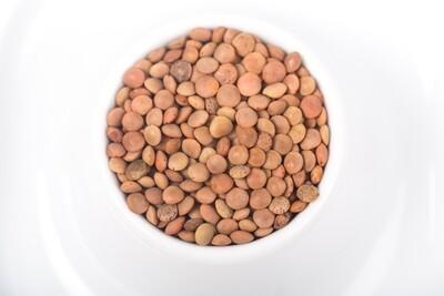 Lentillons du Perche, bio
