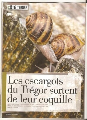 Bocal de 24 chairs d'escargot au court bouillon helix aspersa