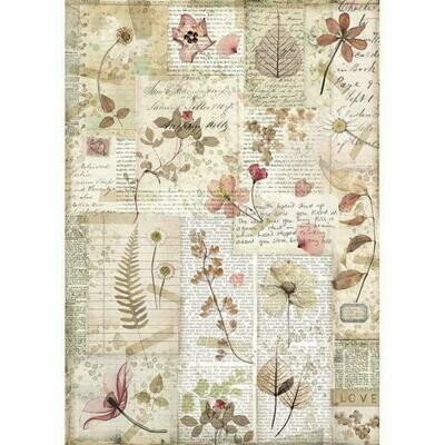 Imagine Pressed Flowers A4 Rice Paper - Stamperia