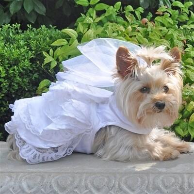 Dog Wedding Harness Dress Set
