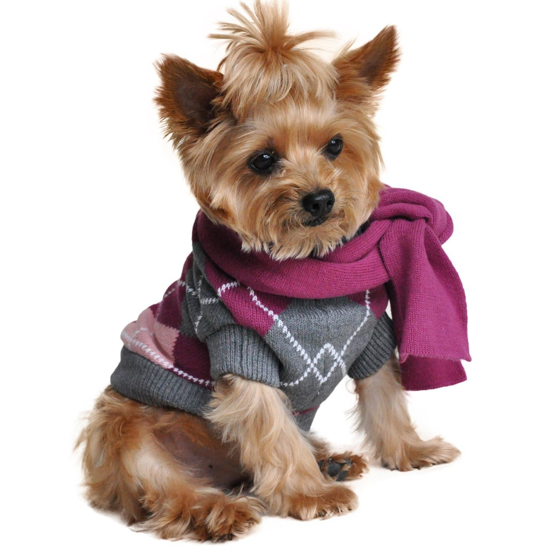 Argyle Purple Dog Sweater w/ Scarf