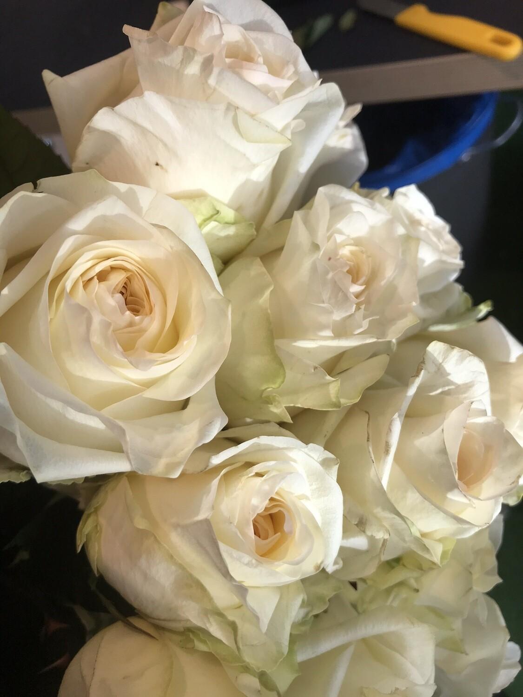 Роза кэндел лайт