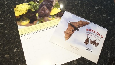 Bats QLD 2019 Calendar