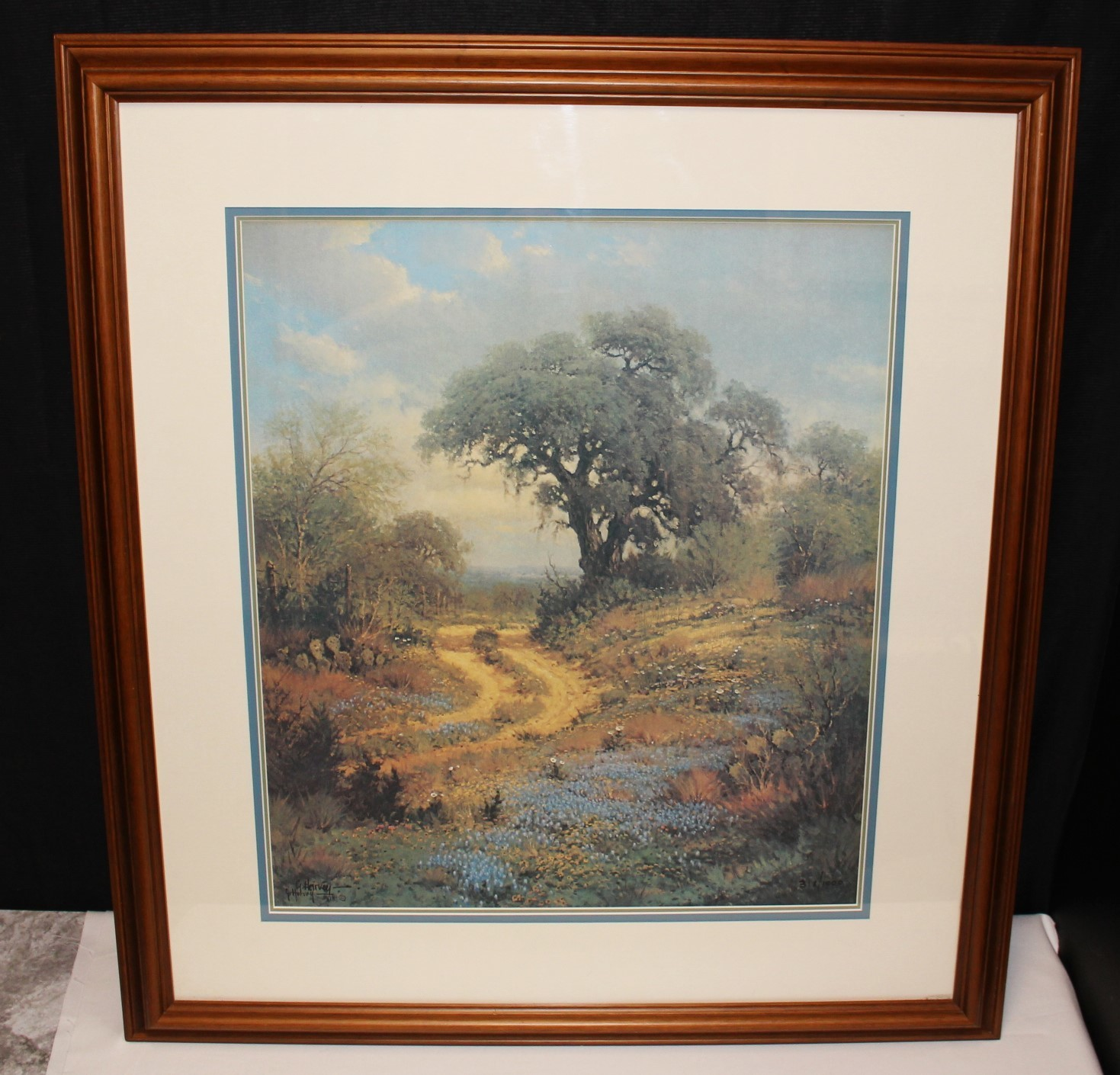 "G. Harvey 1978 ""Spring Palette"" 28 x 25 Framed Limited Edition Print S/N: 318/1000"