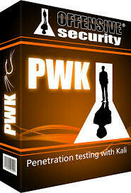 Pentest: Intensive Scans and vulnerability checking