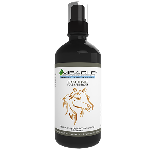 CBD Horse Tincture (16oz) 6000mg Total