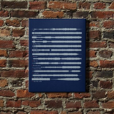 Foo Fighters - The Colour and the Shape Soundwave Canvas