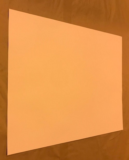 """Poster Board, White, 22""""x28"""",4-ply, 100 sheets/case"""