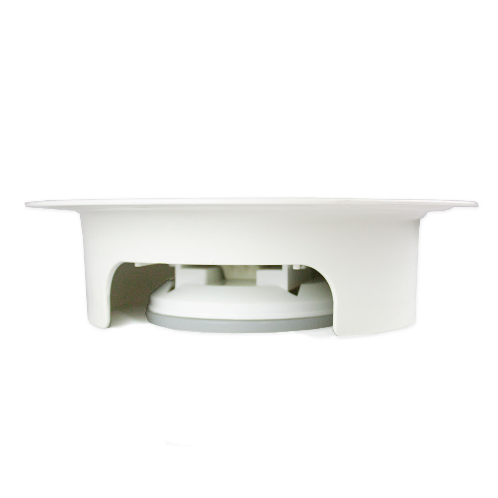 Plate With Rim & Suction Base